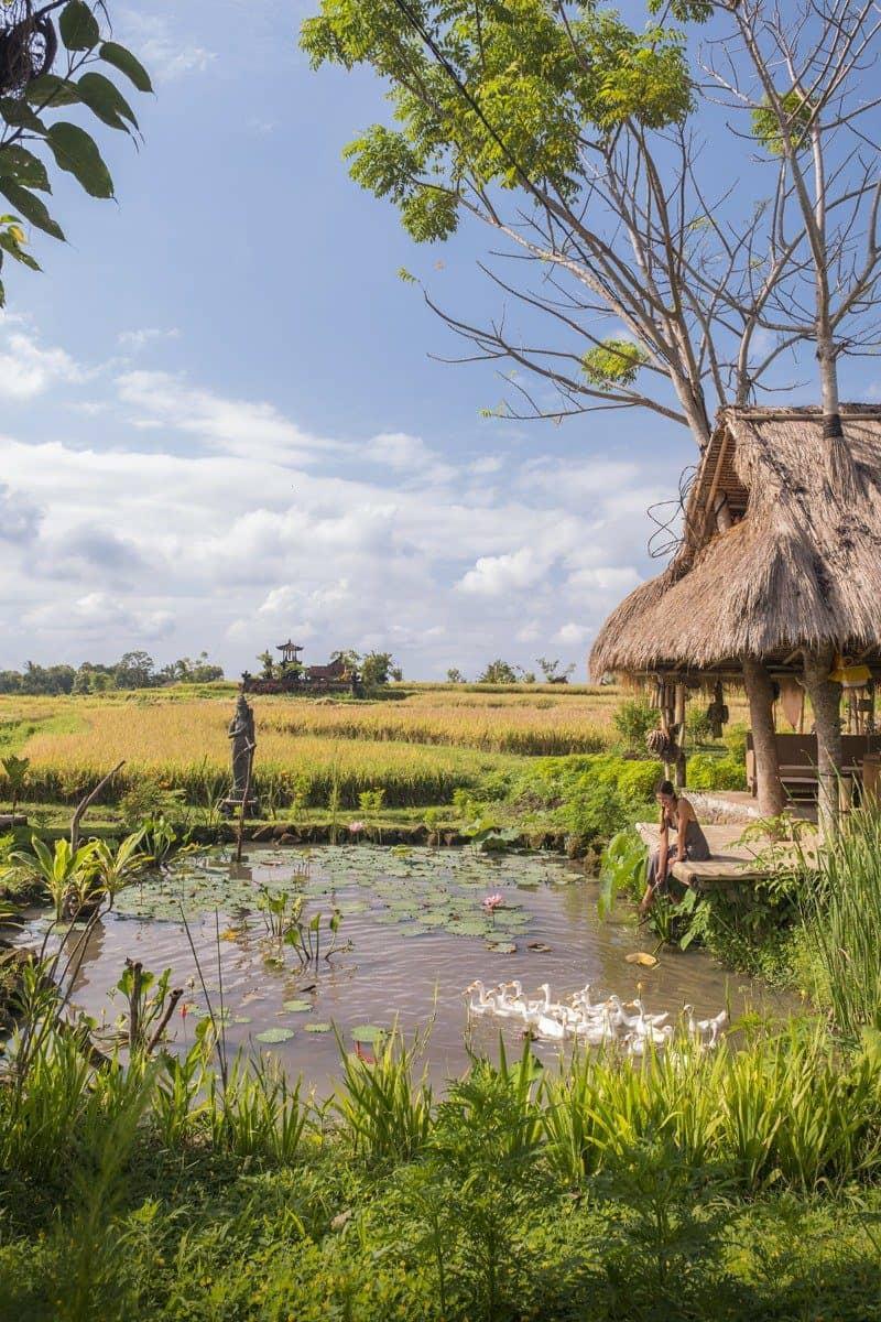Desa Visesa Ubud Bali