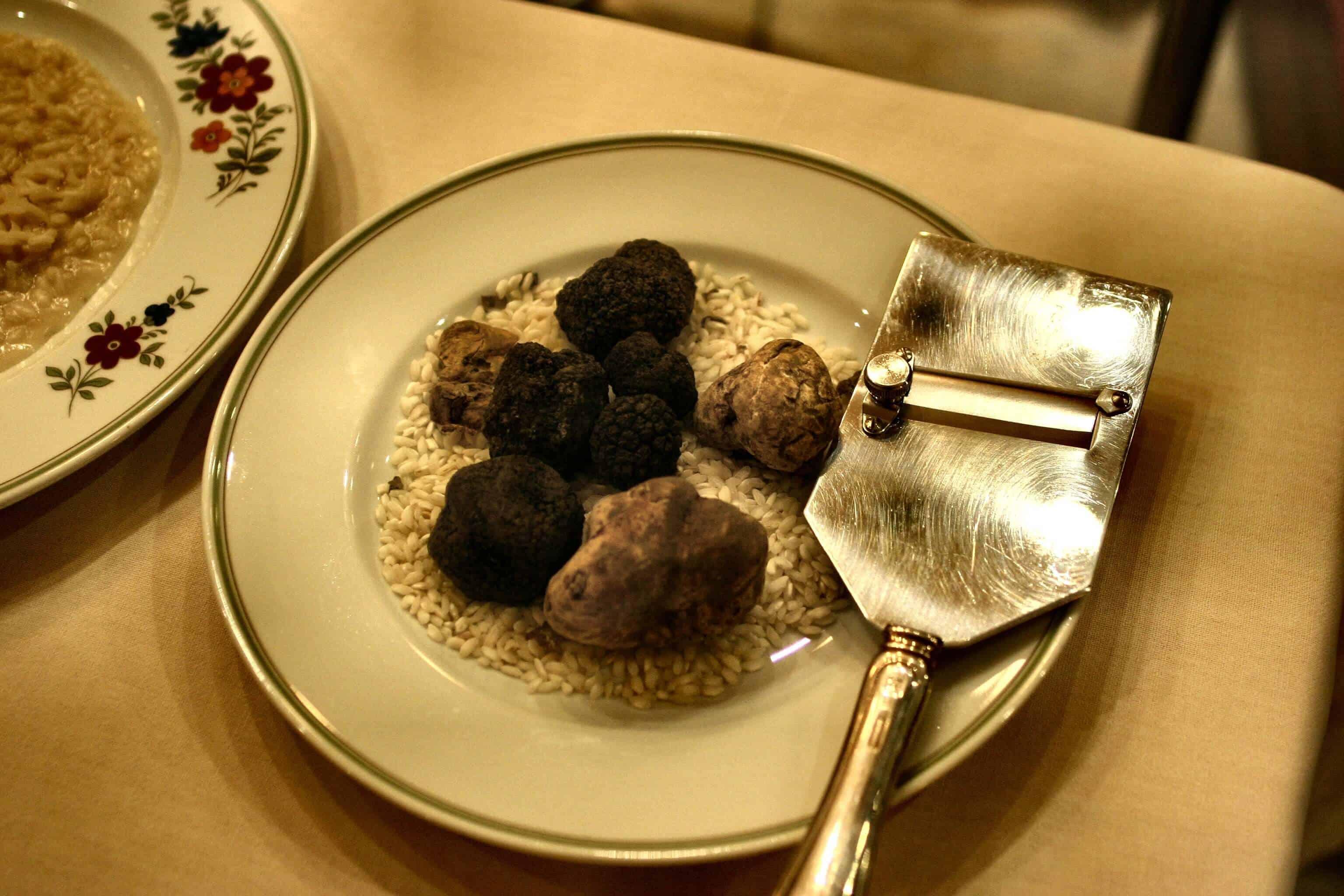 Prague truffle hunting